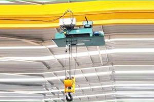 LDY overhead crane for sale